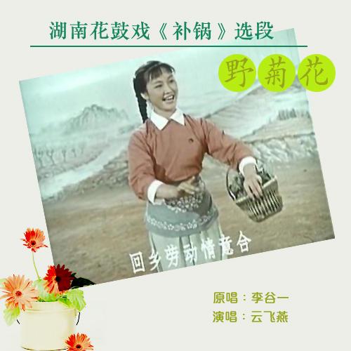 湖南花鼓戏 补锅 选段之 野菊花 手拉风箱