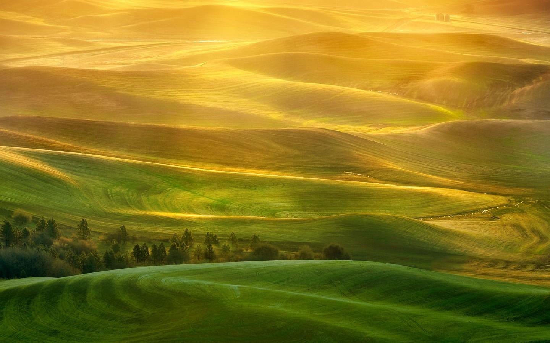 美丽的草原我的家 风吹绿草遍地花 高压电线云中走 清清的河水映晚霞 草库仑里百灵鸟儿唱 牛羊好像珍珠洒 啊 灿烂阳光照草原 草原风光美如画 灿烂阳光照草原 草原建设跨骏马 美丽的草原我的家 水清草美我爱它 勤劳的牧民挥汗雨 双手浇开幸福花 节日跳起丰收舞 欢乐的歌声满天涯 啊 灿烂阳光照草原 草原风光美如画 灿烂阳光照草原 美丽的草原我的家