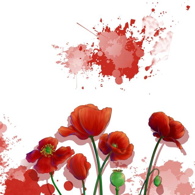 罂粟花 - ~手绘板绘~ - 正版凉夕的相册 - 5sing中国