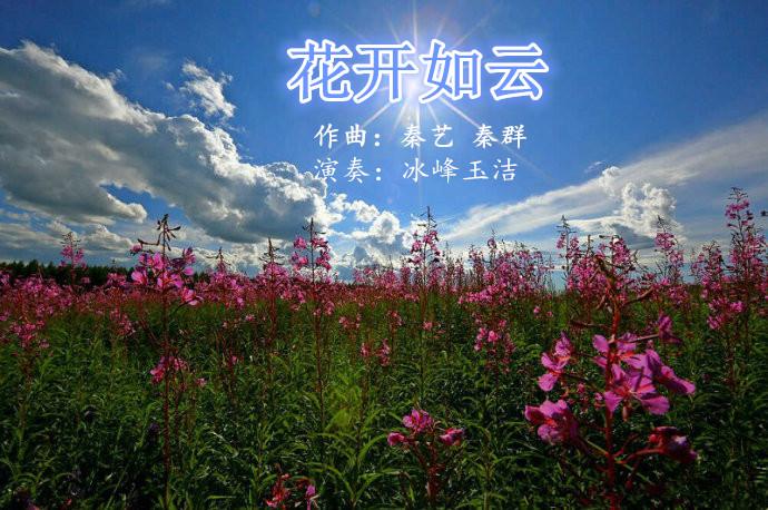 花开如云 d葫芦丝