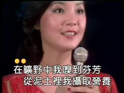 原乡人曲谱-因而,邓丽君小姐的这歌声,至今仍然让人们(特别是让君迷歌友们)