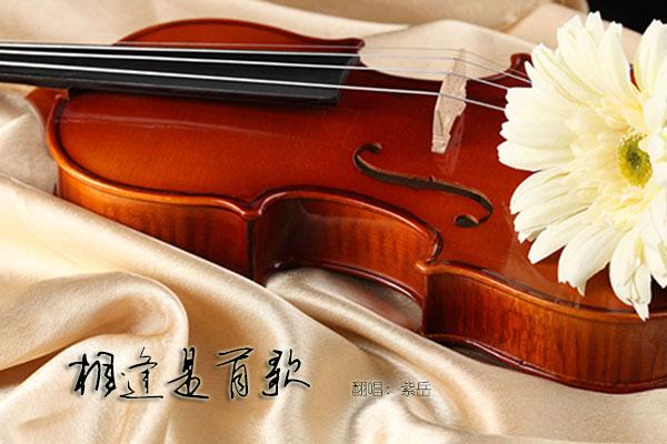 翻唱 相逢是首歌  演唱:紫岳 原唱:俞静 分类:翻唱 语种:华语  曲风