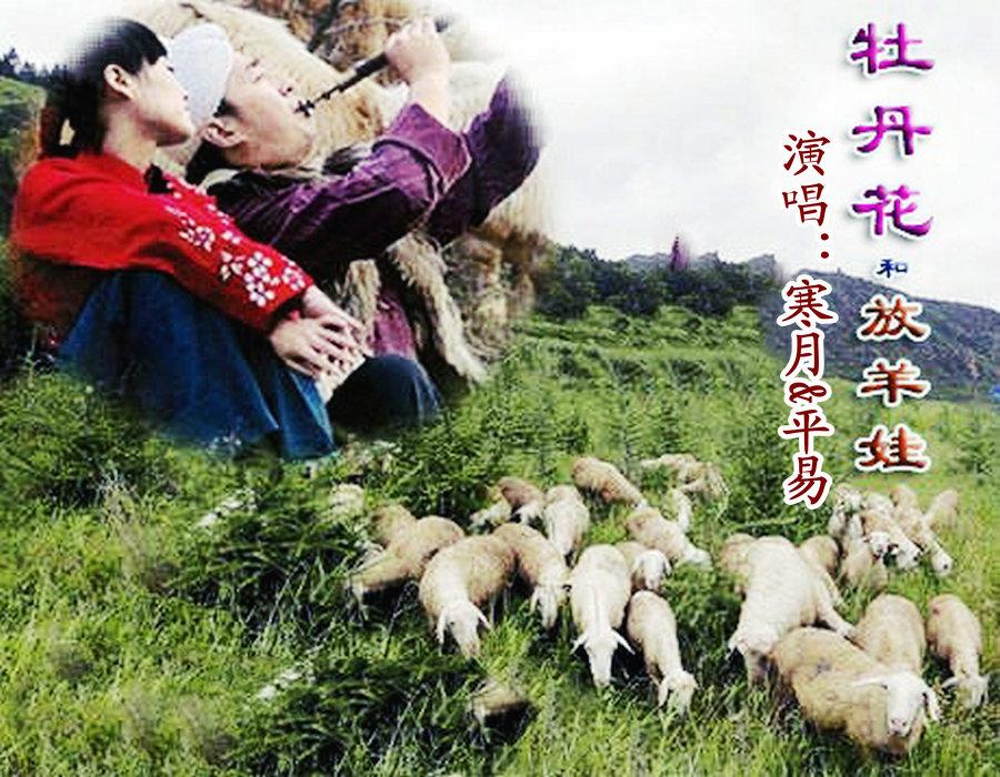 中国放羊发现最大的蟒蛇